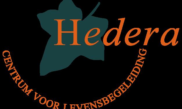 Ons verhaal over het logo van Hedera